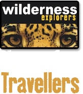 Wilderness Explorers - CLIENTS